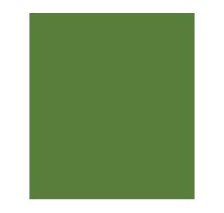 Icon Pflanze Mameka